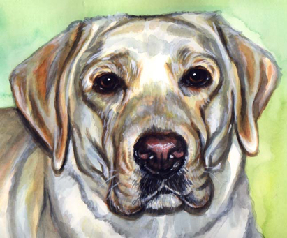 Yellow Lab Dog Painting Watercolor Carol Wells