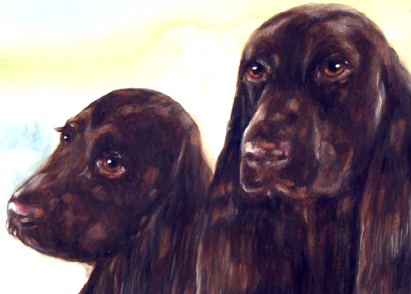 Field Spaniels Watercolor Carol Wells