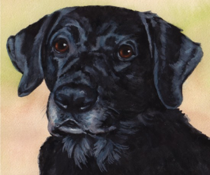 Black Lab Dog Watercolor Carol Wells
