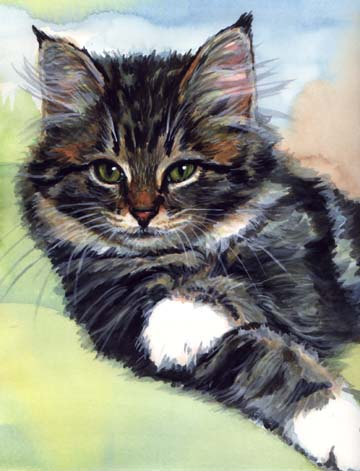 Tabby Kitten Cat Watercolor Carol Wells