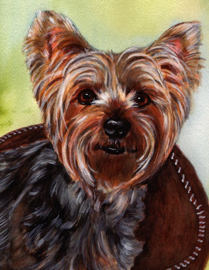 Yorkie Dog Watercolor Carol Wells
