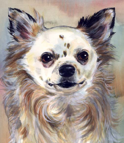 Longhaired Chihuahua Dog Watercolor Carol Wells