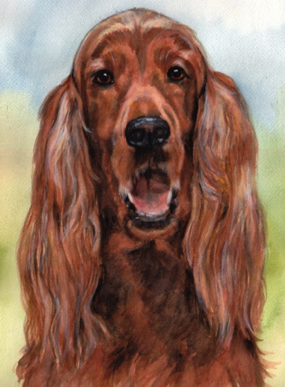 Irish Setter Dog Watercolor Carol Wells