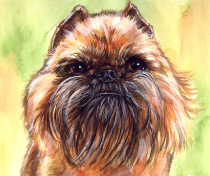 Affenpinscher Dog Watercolor Carol Wells