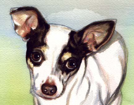 Chihuahua Dog Watercolor Pet Portrait Carol Wells