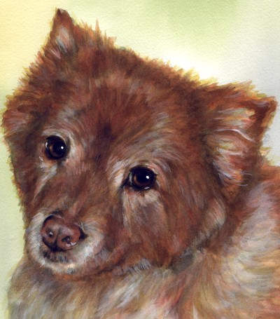 Dog Watercolor Portrait Carol Wells