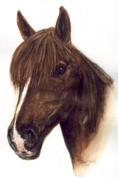 Bay Horse Watercolor by Carol Wells