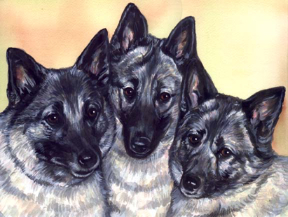 Malinois Dogs Watercolor Carol Wells