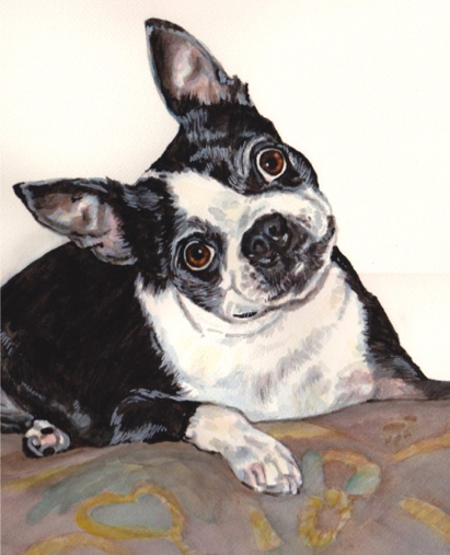 Boston Terrier Dog Watercolor Carol Wells