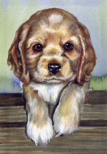 Puppy Dog Watercolor Carol Wells