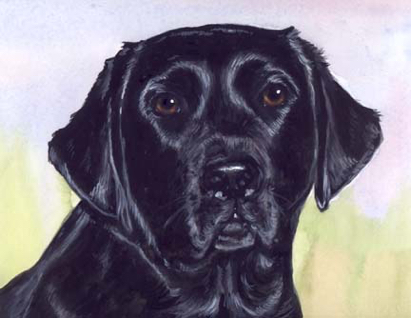 Black Lab Dog Watercolor Pet Portrait Carol Wells