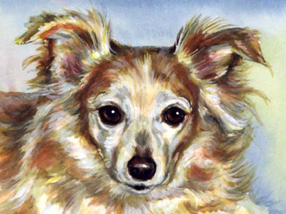 Dog Watercolor Pet Portrait Carol Wells