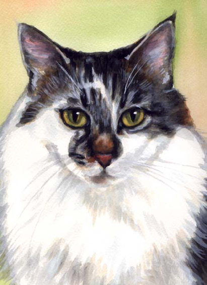Cat Watercolor Carol Wells