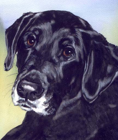 Black Dog Watercolor Pet PortraitCarol Wells