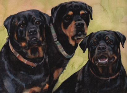 Rottweiler Dogs Watercolor Carol Wells