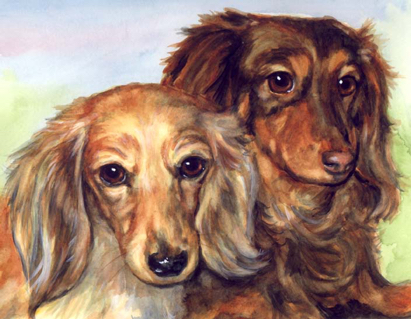 Longhaired Dachshunds Dog Watercolor Carol Wells