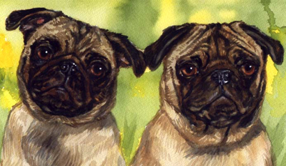 Pug Dogs Watercolor Portrait Carol Wells