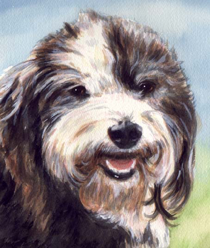 Old English Sheepdog Watercolor Pet Portrait Carol Wells