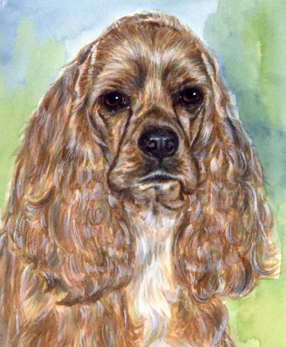 Cocker Spaniel Dog Watercolor Pet Portrait Carol Wells