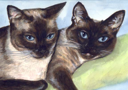 Siamese Cats Watercolor Carol Wells