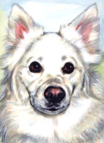 White Dog Watercolor Carol Wells