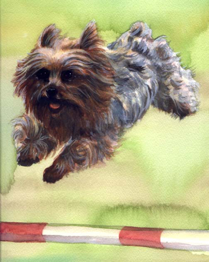 Yorkie Agility Dog Watercolor Carol Wells