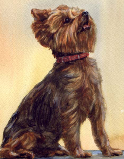 Yorkshire Terrier Yorkie Dog Watercolor Carol Wells