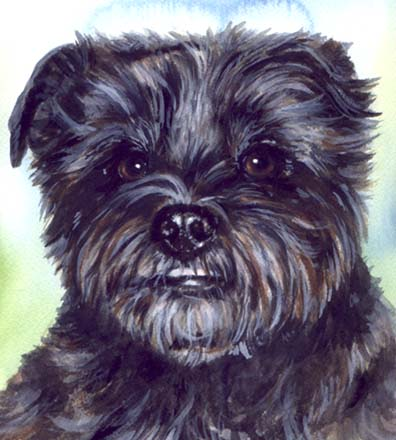 Cute Black Dog Watercolor Carol Wells
