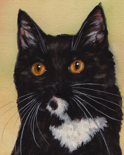 Black White Cat Watercolor Carol Wells