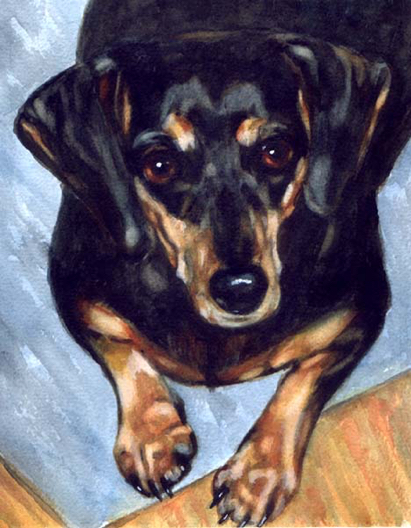 Dachshund Dog Watercolor Carol Wells