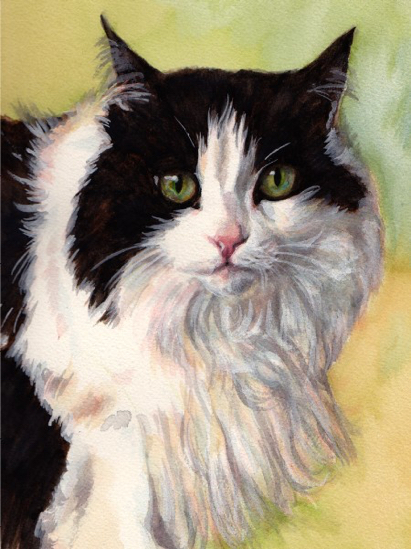 Long-haired Cat Watercolor Carol Wells