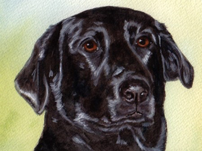 Black Labrador Retriever Dog Watercolor Pet Portrait Carol Wells