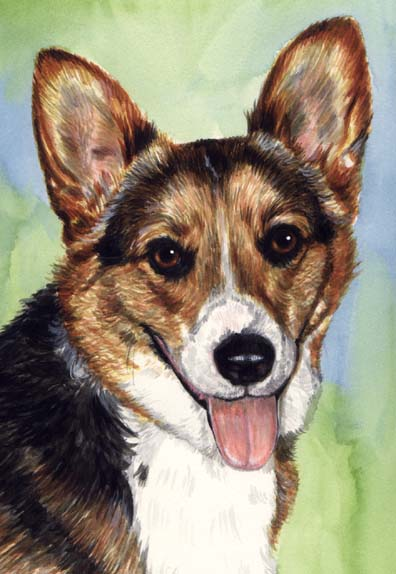 Corgi Dog Watercolor Pet Portrait Carol Wells