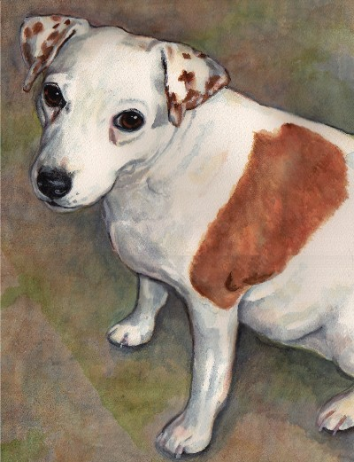 Jack Russell Terrier Dog Watercolor Carol Wells