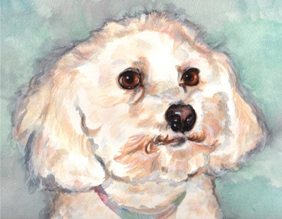 Bichon Frise Dog Watercolor Carol Wells