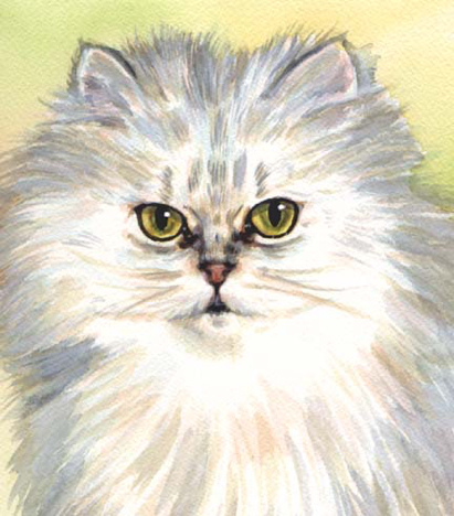 Longhaired White Cat Watercolor Carol Wells