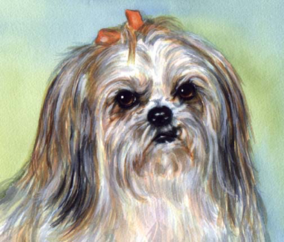 Lhasa Apso Dog Watercolor Pet Portrait Carol Wells
