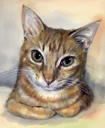 Yellow Cat Watercolor Carol Wells