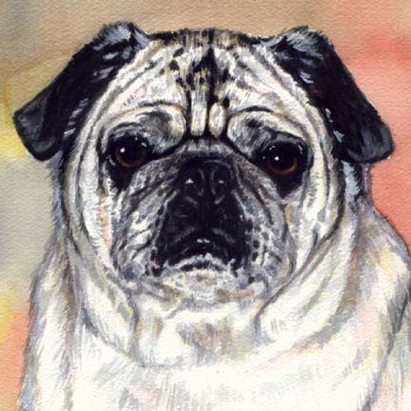 Pug Dog Watercolor Pet Portrait Carol Wells
