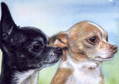 Chihuahua Dogs Watercolor Portrait Carol Wells