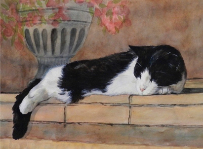 Tuxedo Cat Watercolor Carol Wells