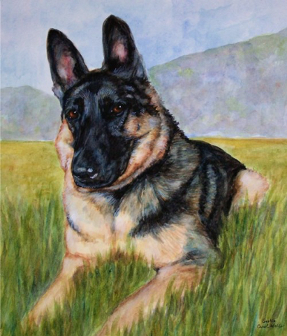 German Shepherd Dog Watercolor Carol Wells