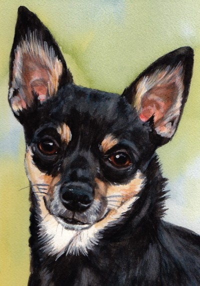 Chihuahua Dog Watercolor Carol Wells