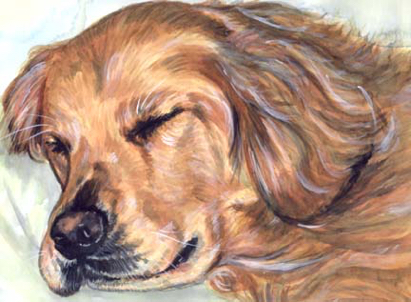 Golden Retriever Sleeping Watercolor Portrait Carol Wells