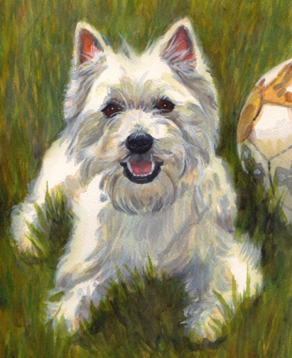 Westie West Highland Terrier Dog Watercolor Carol Wells