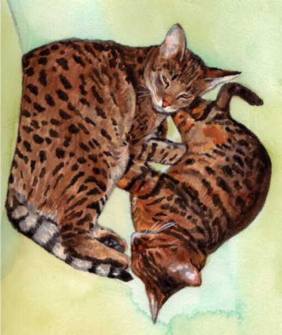 Bengal Cats Watercolor Carol Wells