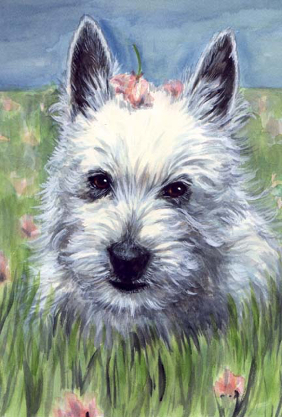 Westie Dog Watercolor Pet Portrait Carol Wells