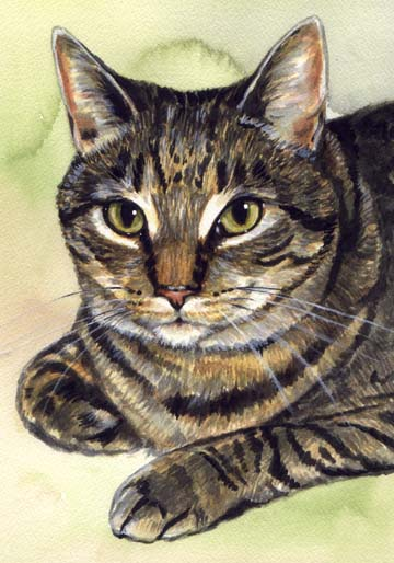 Mackerel Tabby Cat Watercolor Carol Wells
