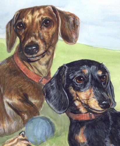 Dachshund Dogs Watercolor Pet Portrait Carol Wells